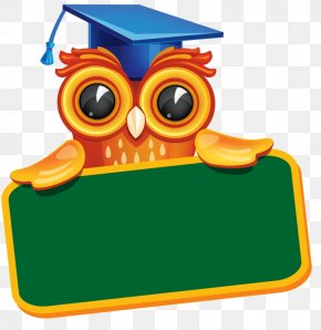 Owl And Chalkboard - Diploma Graduation Ceremony Clip Art PNG