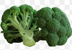 Broccoli - Broccoli Broccoflower Vegetable Food Vegetarian Cuisine PNG