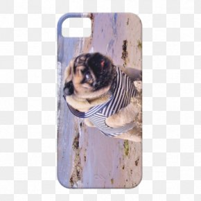 Samsung - Pug Samsung Galaxy S5 IPhone 5 Samsung Galaxy S4 PNG