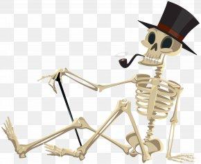 Halloween Skeleton Clip Art Image - Halloween Clip Art PNG