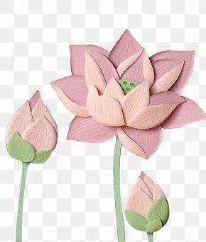 Paper Lotus - Paper Pink Nelumbo Nucifera PNG