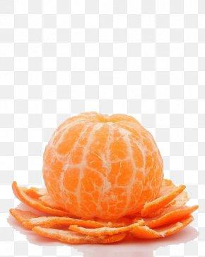 Orange - Chenpi Mandarin Orange Tangerine Fruit PNG