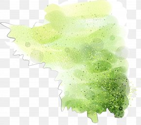 Cartoon Hand Painted Dream Green Watercolor - Green Watercolor Painting Drawing PNG