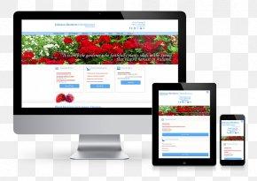 Web Design - Responsive Web Design Web Development PNG