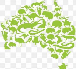 Creative Map Of Australia - Fauna Of Australia Kangaroo Illustration PNG