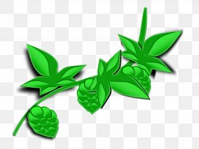 Hemp Family Herbal - Drawing Of Family PNG
