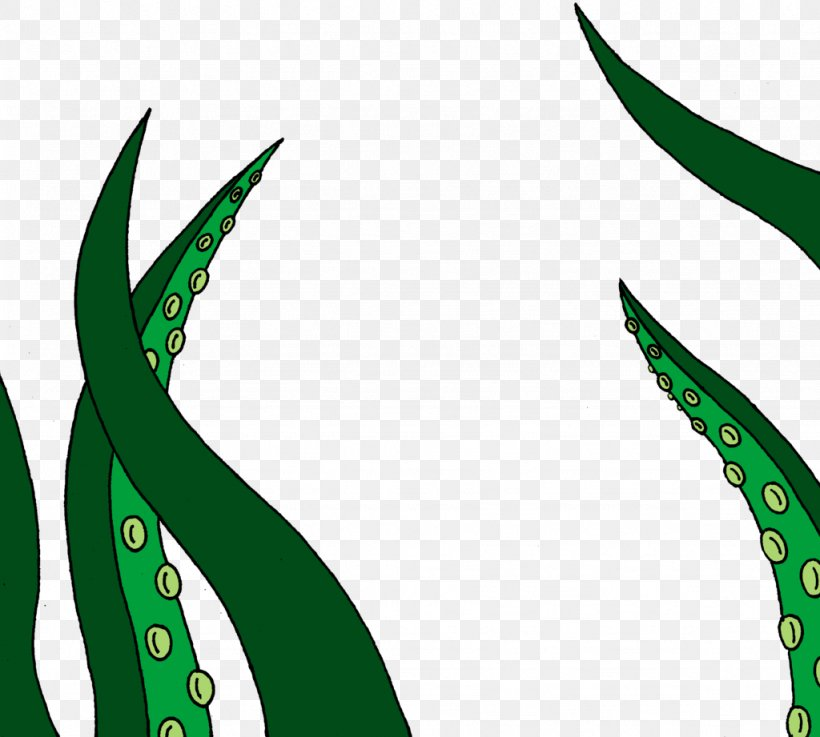 Leaf Grasses Plant Stem Line Clip Art, PNG, 1024x921px, Leaf, Family, Flora, Grass, Grass Family Download Free