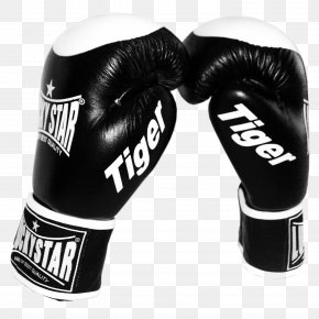 Boxing Gloves - Boxing Glove Sparring Boxing Training PNG