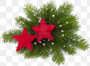 Christmas - Christmas Decoration Christmas Ornament Gift PNG