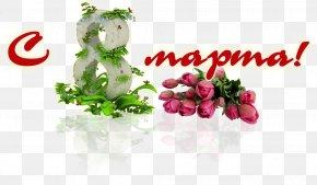 Flower - Floral Design 8 March Cut Flowers Telegram PNG