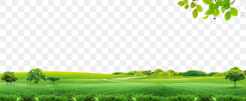 Sky Icon, PNG, 1500x619px, Computer Graphics, Brand, Daytime, Energy, Field Download Free