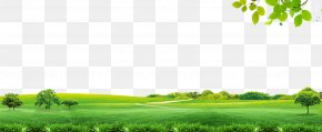 Spring Spring Material - Sky Icon PNG
