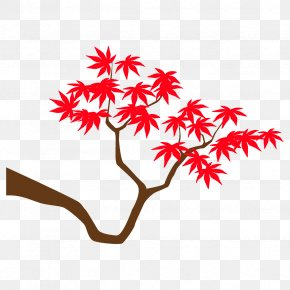 Twig Flower - Maple Branch Maple Leaves Autumn Tree PNG