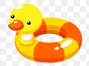 Toy - Swim Ring Stock Photography Swimming Pool Clip Art PNG
