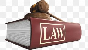 Politics Turkey - United States Lawyer Law College Law Firm PNG