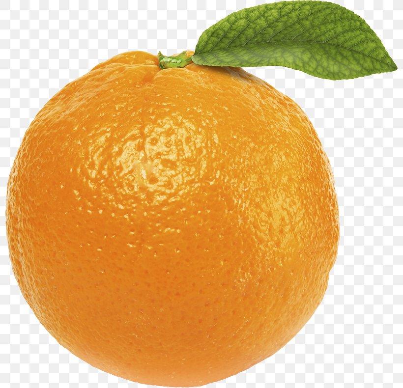 Orange Juice Desktop Wallpaper Clip Art, PNG, 800x790px, Orange, Bitter Orange, Chenpi, Citric Acid, Citron Download Free