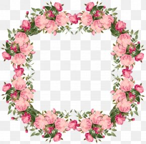 Hand-painted Pink Floral Decoration - Pink Rose Picture Frame Flower Clip Art PNG