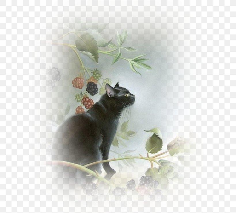 Black Cat Kitten Le Chat Noir Pet, PNG, 600x742px, Cat, Animal, Art, Black, Black Cat Download Free