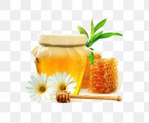 Bee Honey Pot - Honey Bee Honey Bee Nectar PNG