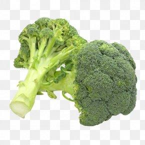 Broccoli - Juice Broccoli Slaw Organic Food Stuffing PNG