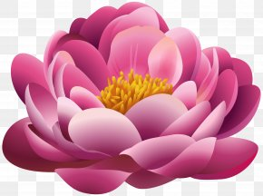 Beautiful Pink Flower Clipart Image - Pink Flowers Clip Art PNG