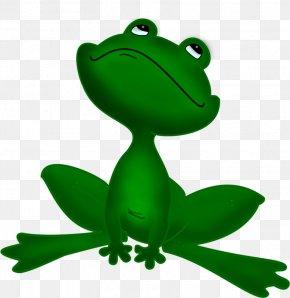 Vm - Tree Frog True Frog The Frog Prince Clip Art PNG