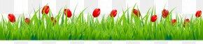 Cartoon Spring Grass - Tulip Flower Stock Photography Clip Art PNG