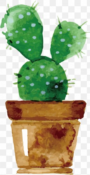 Cactus - Watercolor Painting Cactus Succulent Plant Drawing PNG