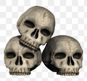 Skull - Skull Skeleton Clip Art PNG