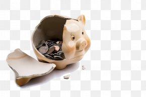 Broken Piggy Bank - Piggy Bank Saving Money Funding PNG