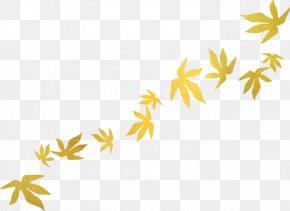 Leaf - Leaf Autumn Leaves Clip Art Blog PNG