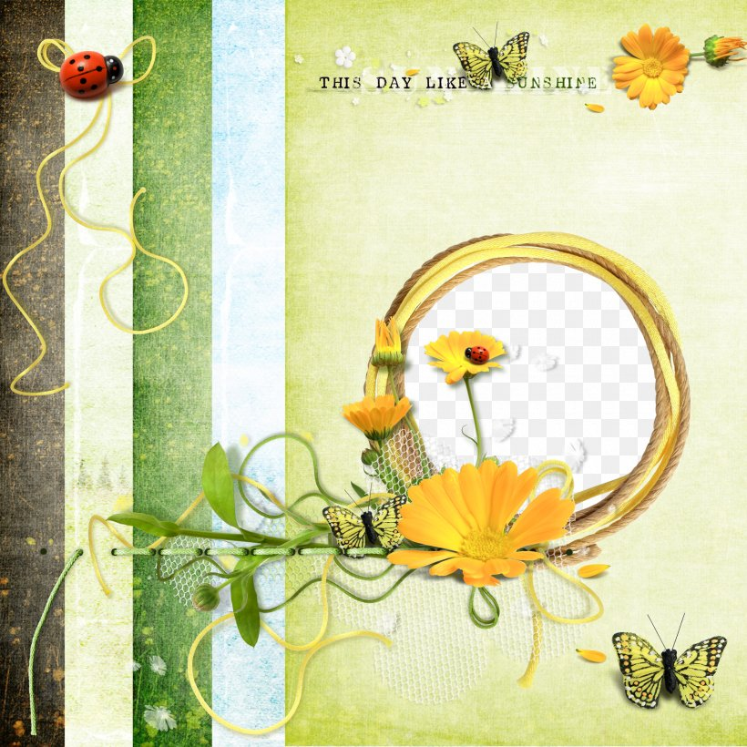 Butterfly Picture Frame Drawing, PNG, 1800x1800px, Butterfly, Animation, Drawing, Flora, Floral Design Download Free
