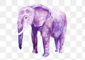 Purple Elephant - Elephant Festival Cuddly Elephant Seeing Pink Elephants Illustration PNG