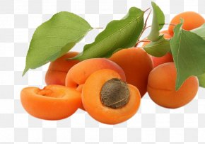 Apricots - Apricot 4K Resolution High-definition Video Fruit Wallpaper PNG