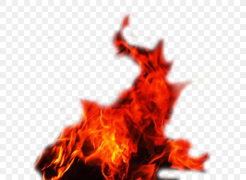 Fire Flame, PNG, 600x600px, Fire, Flame, Heat, Layers, Orange Download Free