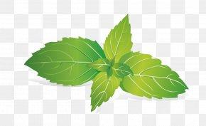 Mint Leaves - Leaf Mint Raster Graphics PNG