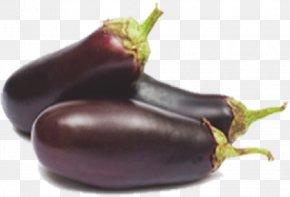 Eggplant - Eggplant Ratatouille Vegetable Food Tomato PNG