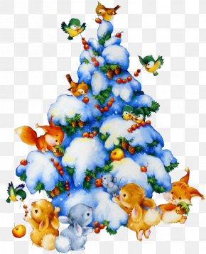 Christmas - New Year Tree Christmas Tree Holiday PNG