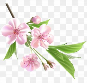Flowering Branch Cliparts - Flower Tree Branch Clip Art PNG