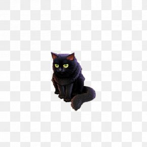 A Black Cat - Bombay Cat Black Cat Le Chat Noir Felidae Domestic Short-haired Cat PNG