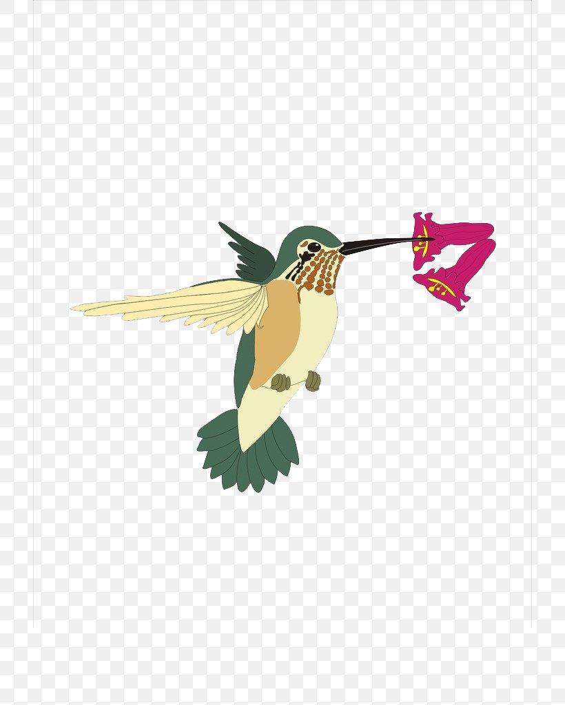 Hummingbird Sparrow Clip Art, PNG, 724x1024px, Bird, Art, Beak, Bird Nest, Drawing Download Free
