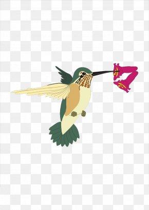 Sparrow - Hummingbird Sparrow Clip Art PNG