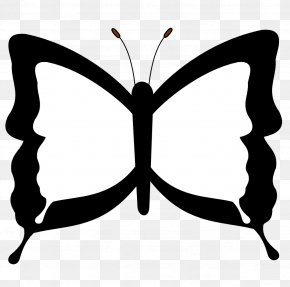 Butterfly Drawings Black And White - Butterfly Black And White Drawing Coloring Book Clip Art PNG