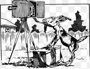 Goat - Cartoon Goat Black And White Clip Art PNG