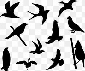 Cartoon Bird Tattoo - Hummingbird Lovebird Clip Art PNG