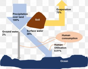 Water - Water Scarcity Water Cycle Fresh Water PNG