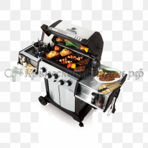 Outdoor Grill - Barbecue Grilling Rotisserie Cooking Propane PNG