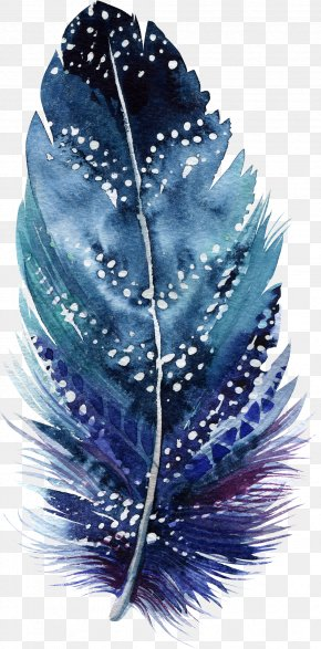 Feather - Watercolor Painting Drawing Feather Art Illustration PNG