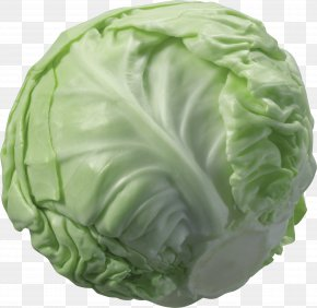Cabbage Image - Cabbage Cauliflower Vegetable PNG