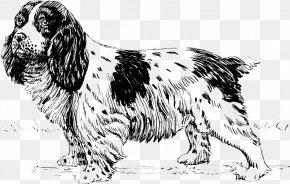 English Cocker Spaniel - English Setter English Springer Spaniel Sussex Spaniel Russian Spaniel Dog Breed PNG